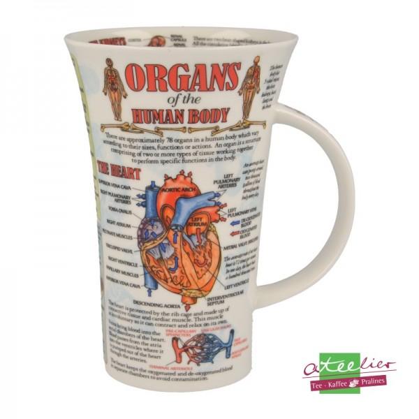 "Dunoon Becher Glencoe ""Organs of Human Body"", 0,5 l"